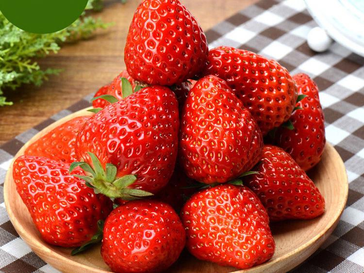 中国红瓷|中国红瓷网|红瓷盒装新鲜奶油草莓